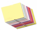 Vehicle Deal Envelopes (Plain-Unprinted) - 500 per Pkg - Product Image